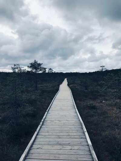 Made With IPhone 7 Cold Cold Effect Cloud - Sky Sky Direction The Way Forward Diminishing Perspective Plant Nature Tree No People Day vanishing point Tranquility Tranquil Scene Outdoors Beauty In Nature Wood - Material Land Footpath Growth Scenics - Nature