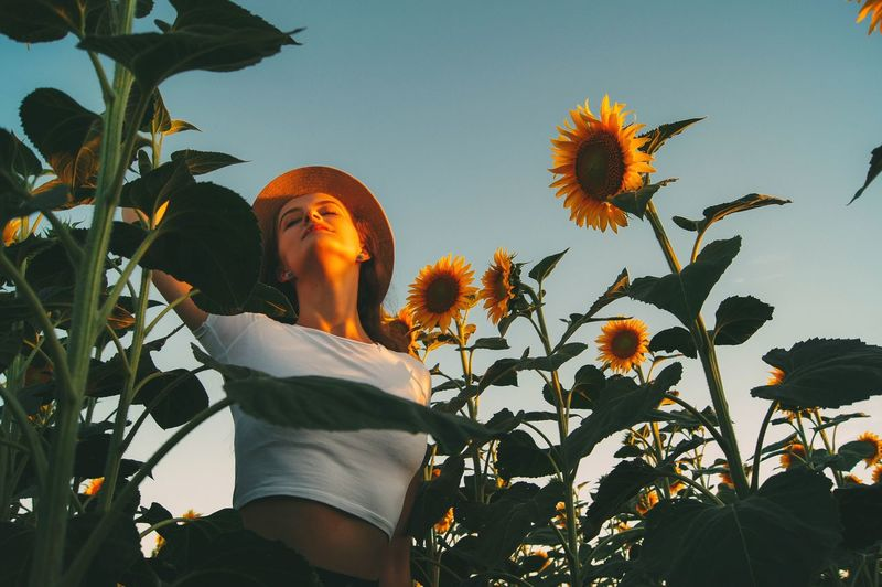 Low angle view of woman standing by sunflower against sky