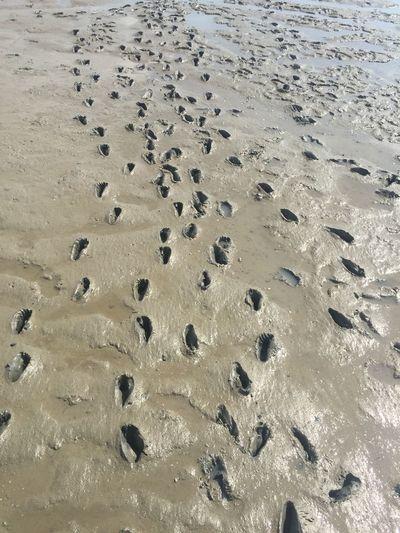 Deine Spuren im S...(Watt)😜 Beach Wattenmeer Nordsee Tadaa Community EyeEm Nature Lover EyeEm Deutschland Daswasichsehe😊