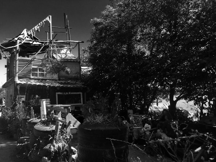 Bateau sur terre Wild Urbex Blackandwhite Black EyeEmNewHere Notre Dame Des Landes Zad Tree No People Outdoors Architecture Built Structure Building Exterior Day Growth Sky EyeEmNewHere