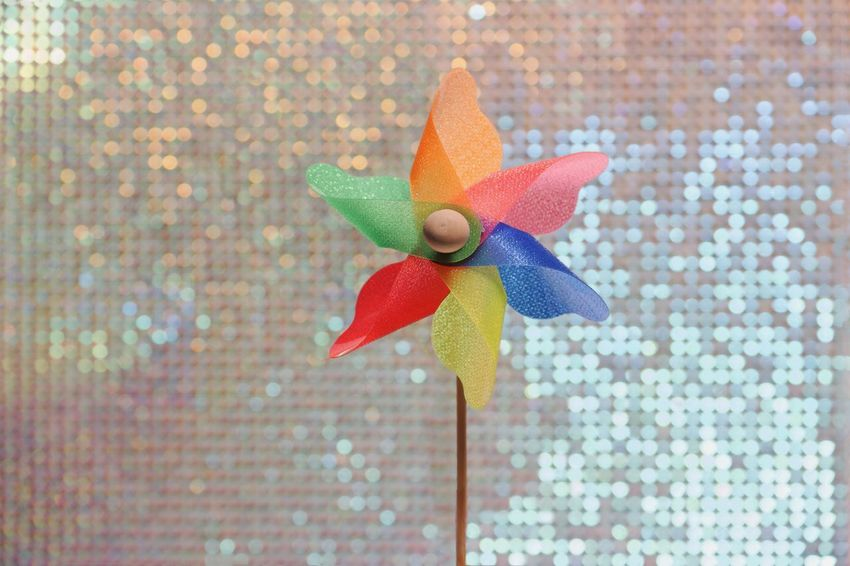 Prop bin weekend Sparkle Pinwheel Still Life Close-up Art And Craft No People Pattern Flower Flowering Plant Toy