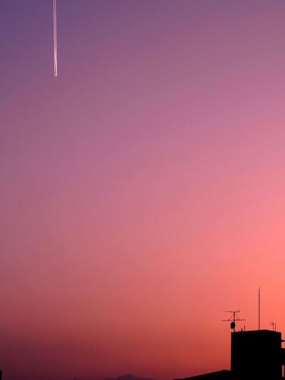 Low angle view of silhouette pink against sky during sunset