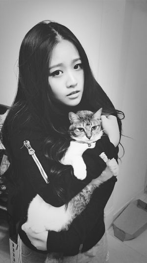 Cat♡ Cute Pets Bw_collection Cat Lovers