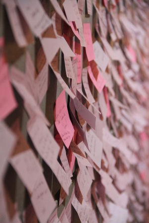 Backgrounds Close-up Day Full Frame Indoors  Large Group Of Objects No People On The Wall Paper Pink Notes Post Its Text Writing On The Wall