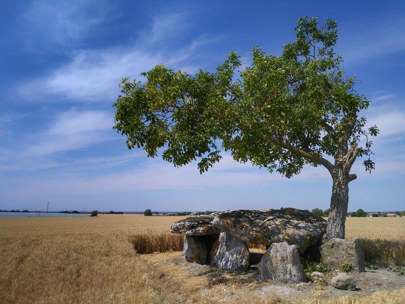 Landscape Druid's Secret Place Dolmen Mystery Outdoors Cloud - Sky No People Tree Sky