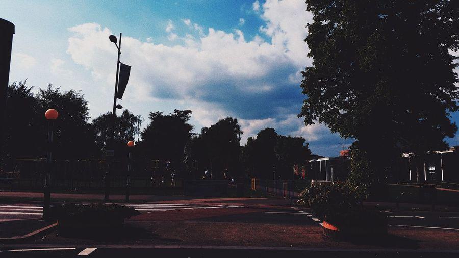 Sky Cloud - Sky Outdoors Tree