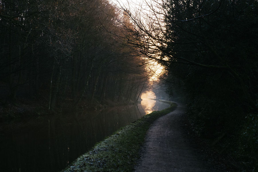 Towpath Afternoon Sun Canal Landscape Leeds Nature Sunset Towpath Tree Water Yorkshire