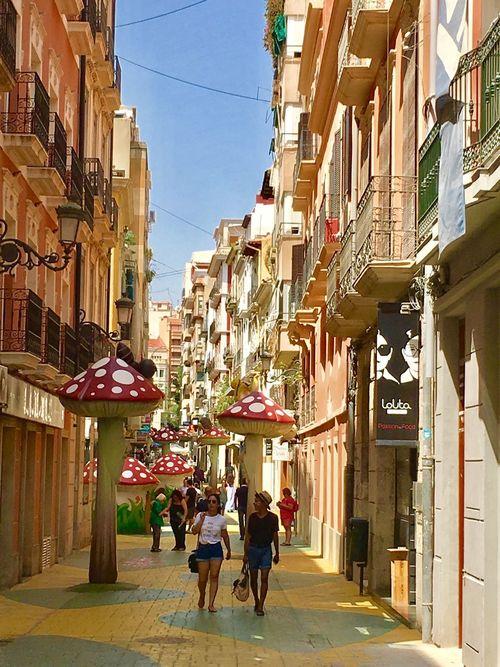 España Españoles Y Sus Fotos España🇪🇸 Alicante Alicante, Spain Hongos  Holding Old Buildings Old City Old Turismo Architecture Architecture_collection SPAIN Balcony Spain♥ Mashrooms Turism Exterior