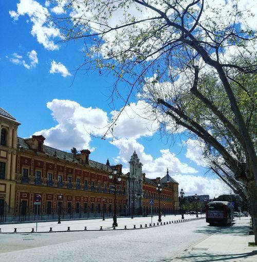 Sky Blue Seville SPAIN No-people Cloud Sky Seville Palacio San Telmo City Urban Art