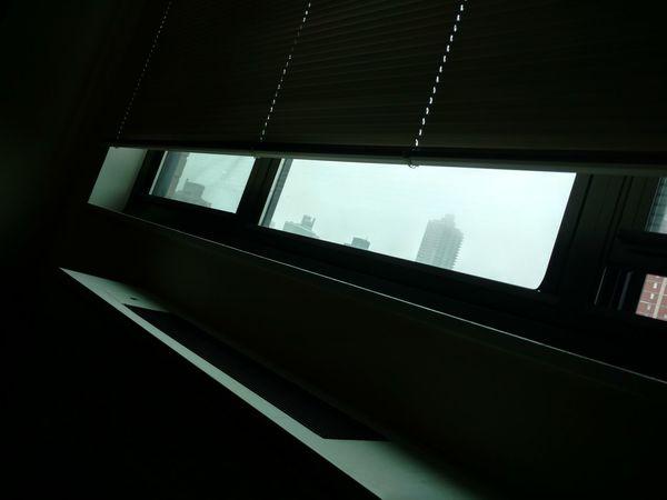 Window Foggy Day