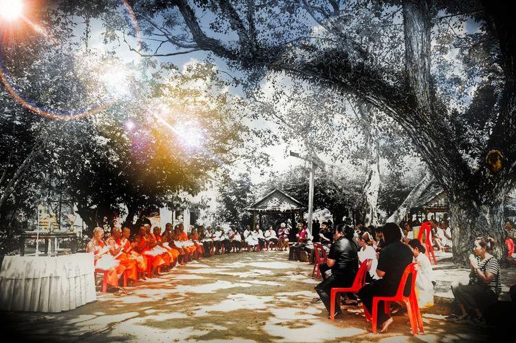 Songkran Festival Temble Temble Buddism Is Love Buddism Monk  Festival Season Festival Of Colors Thai Temple Thai Festival APIL BeHappy♡ Buddha Image Buddha Statue