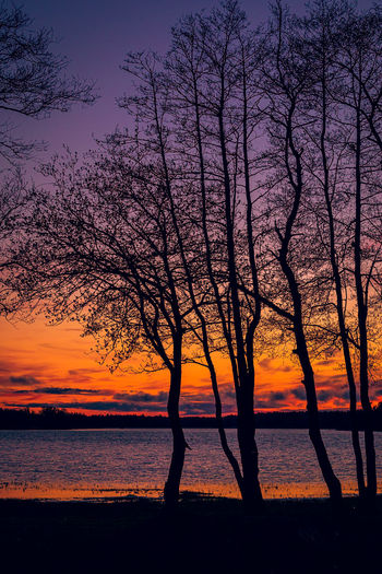 Silhouette trees by lake against romantic sky at sunset