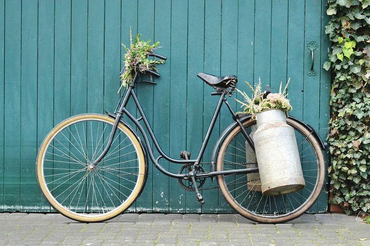 Bicycle Mode Of Transport Pedal Vintage Vintage Bicycles Vintage Bike Bike Bicycles Vintage Flowers Flower Collection Chabbychic Transportation Farm Life Cottage Antique Antique Bike Velo Fahrrad Old Bike Milkcan Milchkanne Scheunentor