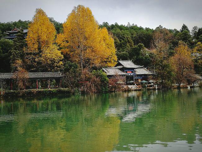 Treeart Nature_perfection Yellowish-orange Water Temple Architecture Black Dragon Pond China View Lijiang_Yunnan_China