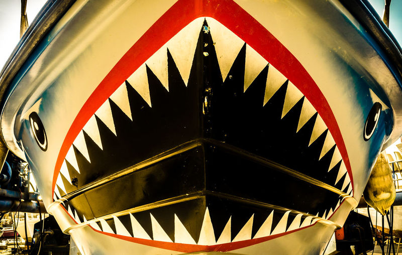 Arts Culture And Entertainment Boat Ceiling Circle Cropped Culture Design Directly Below GreatWhiteShark Illuminated Indoors  Metal Ornate Part Of Pattern Railing Religion Sea Shark Sharks Spiral Staircase Steps Steps And Staircases Whiteshark
