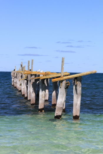 Old jetty in Israelite Bay, Cape Arid National Park, Western Australia. Great contrasting colours. Beauty In Nature Birds On Jetty Cape Arid National Park Day Drying Hanging Horizon Over Water Jetty Jetty Structure Nature No People Old Jetty Wood Old Jetty Woood Pier Outdoors Scenics Sea Seagulls On Jetty Sky Water Waterfront Western Australia