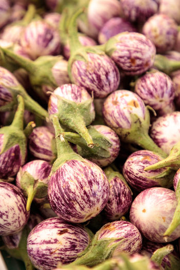 Purple, white and green Thai eggplant Solanum melongena sold at a farmers market and grown locally in Southern California. Farm Farmers Market Natural Nature Raw Thai Eggplant Eggplant🍆 Farm To Table Farm To Table Atmosphere Fresh Food Organic Produce Purple Raw Food Solanum Melongena Vegetable White