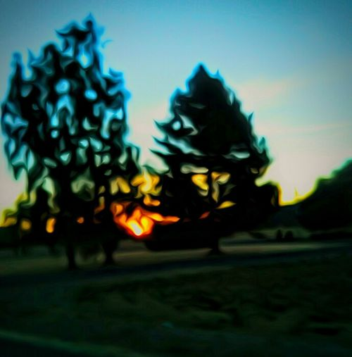 Sunrise_Collection Oregon Sunrise Sunrise In The Sticks Beautiful Whats On The Roll Edit By Carrie Color Portrait Colour Of Life What Else Do You Need Two Is Better Than One