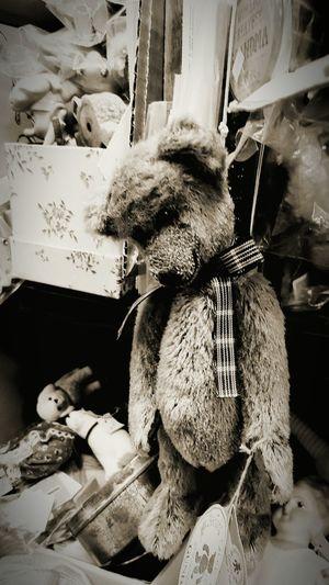 Hanging Out dead Hanged Deadbear