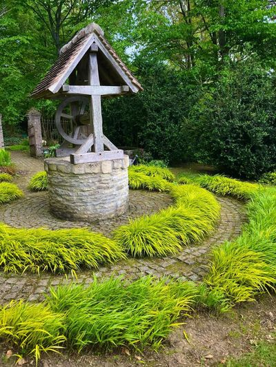 Jardin remarquable Plant Green Color Growth Day Nature No People Grass Water Formal Garden Creativity