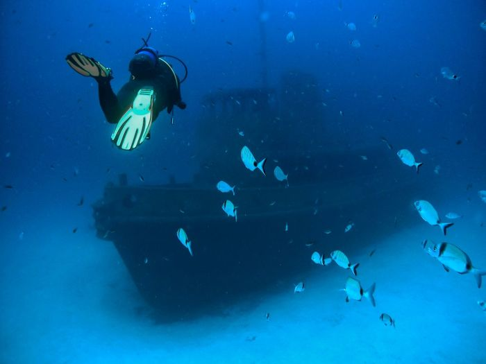 Scuba Diver Swimming Towards Shipwreck