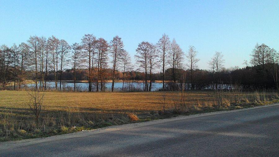 Wiosna Wies Jezioro_dowcień Piękna_pogoda Piekne świeci Słońce Polecam Rolki