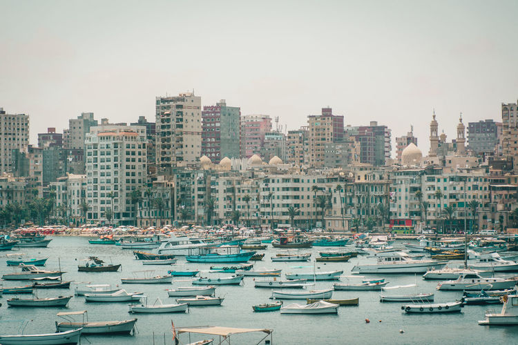 Sailboats moored on harbor against buildings in city