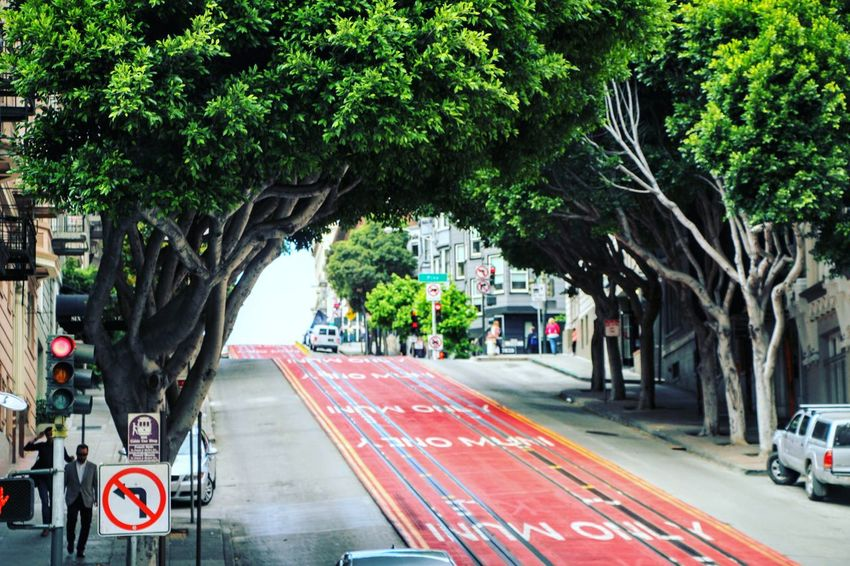 City City Life City Street Color Day Green Nature No People Outdoors Red Road Road Sign Street Transportation Tree
