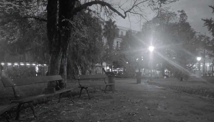 That Cloudy Evening when there is no-one in the Park except for empty Benches and Lamps
