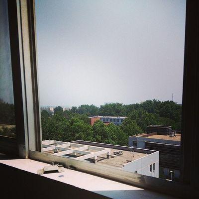 学校外面纯净的天空,真是太美了。。