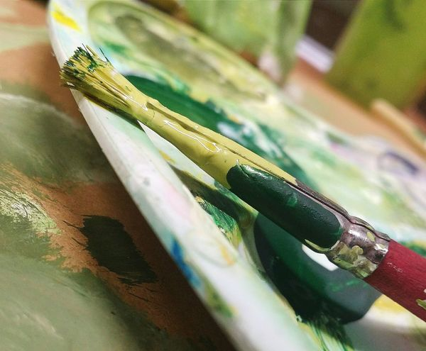 Indoors  Close-up Day Art Class School Paint Painting Brushes Palette Colours Green Macro Photography Photography
