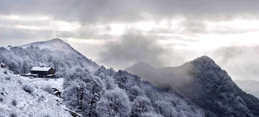 Winter Snow Cold Temperature Mountain Fog Outdoors Nature