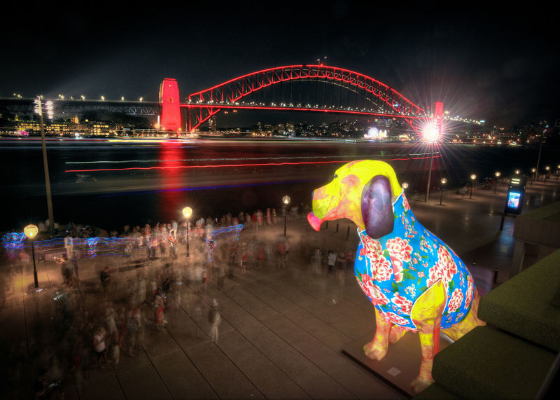 Red Sydney Harbour Bridge Animal Themes Carousel Chinese New Year City Illuminated Multi Colored Night No People Outdoors Year Of The Dog
