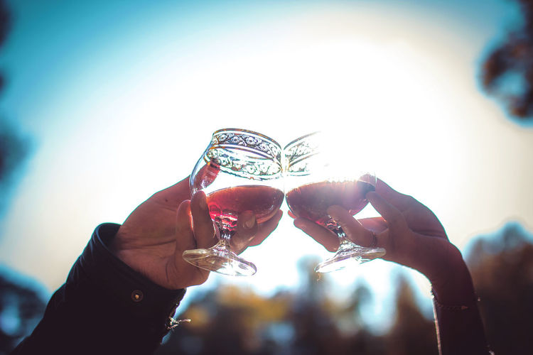Human Hand Two People Sunlight Stemware Wine Wineglasses Love Wedding Couple Pledge Togetherness Young Adult Business Sunshine Hotspot