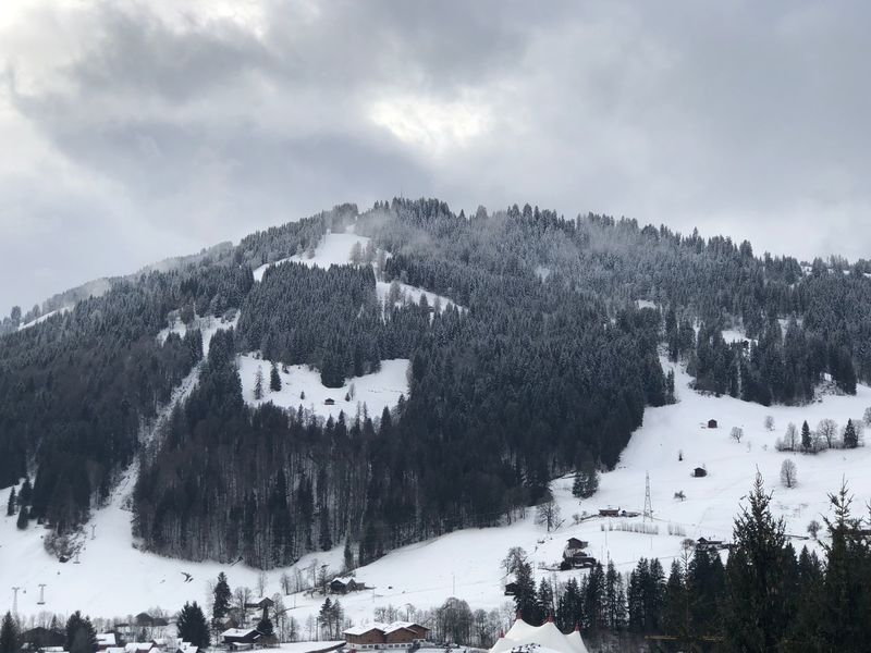 Majestic trees Gstaad Bolonie Style Bolonie Art Bolonie Snow Winter Cold Temperature Mountain Weather Nature Tree Scenics Beauty In Nature Sky Outdoors Tranquility Tranquil Scene Snowcapped Mountain No People Mountain Range Cloud - Sky Frozen Day Landscape Shades Of Winter