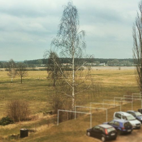 Blick auf den Horstsee. HTC HTCOneM9 OneM9 HDR