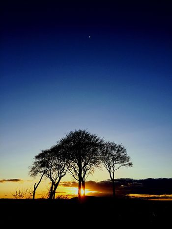 Seven Sisters Sunset Hugging A Tree Shillouette Clouds And Sky Light And Shadow Day And Night Creative Light And Shadow