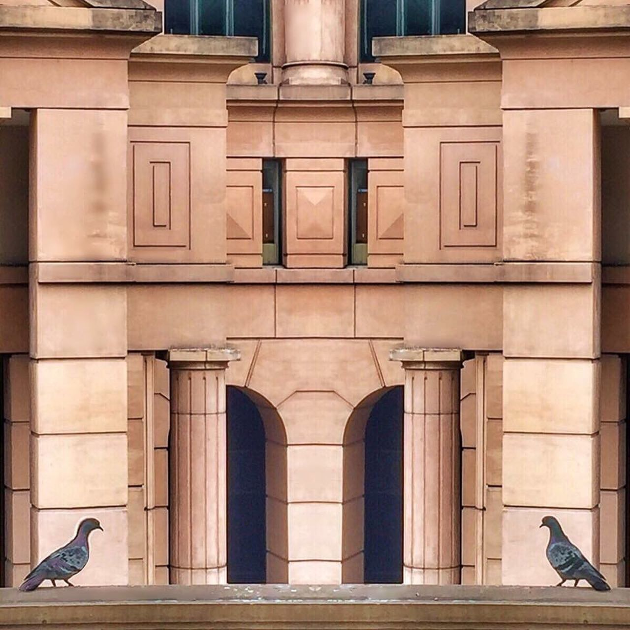 architecture, built structure, building exterior, outdoors, no people, day, bird