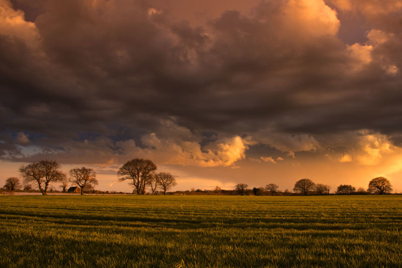 Scenic view of grassy landscape against dramatic sky at sunset