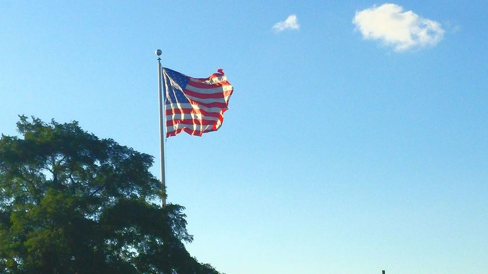 LYNN Flag Live Free Or Die