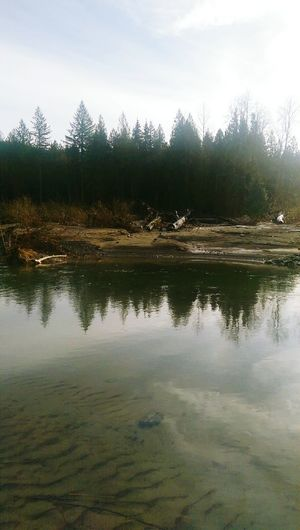 A rising river...