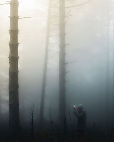 Man by trees in forest during foggy weather