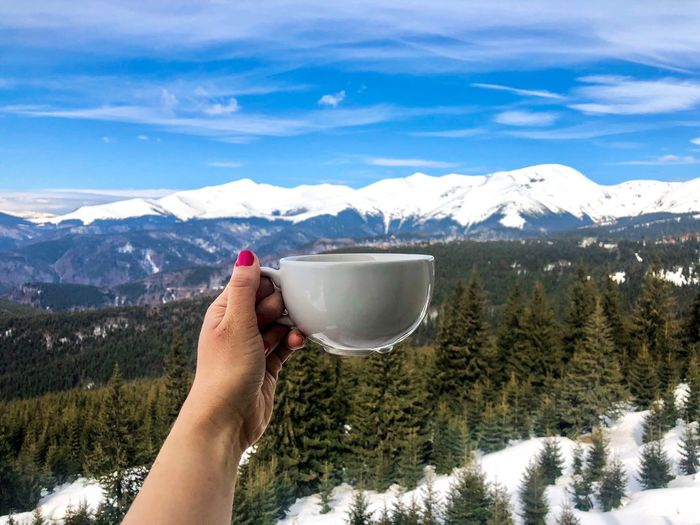 Woman's hand holding white cup with snowcapped mountains in the background Pine Tree Coniferous Tree Forest Outdoors Mountain Beverage Drink Mug Cup Woman Holding Mountain One Person Snow Human Body Part Cold Temperature Leisure Activity Hand Human Hand Real People Mountain Range Snowcapped Mountain Winter Nature Day Scenics - Nature Beauty In Nature Lifestyles Personal Perspective Body Part