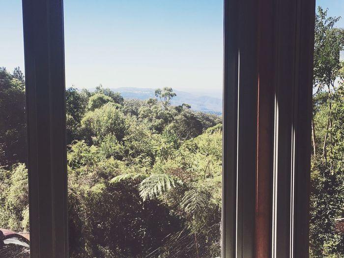 Australia Wildlife & Nature View