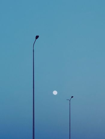 and I'll be your light Bluenight Minimal Minimalist ShotOnIphone Shotoniphonex Nightphotography Lighting Equipment Street Light Street Low Angle View Sky Blue Clear Sky No People Light Outdoors Electricity  The Traveler - 2018 EyeEm Awards 10 HUAWEI Photo Award: After Dark