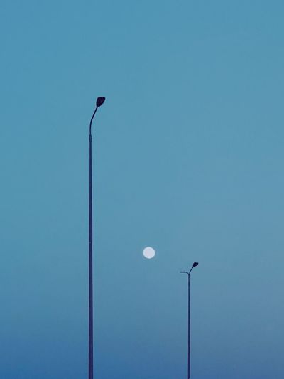 and I'll be your light Bluenight Minimal Minimalist ShotOnIphone Shotoniphonex Nightphotography Lighting Equipment Street Light Street Low Angle View Sky Blue Clear Sky No People Light Outdoors Electricity  The Traveler - 2018 EyeEm Awards 10 HUAWEI Photo Award: After Dark 2018 In One Photograph