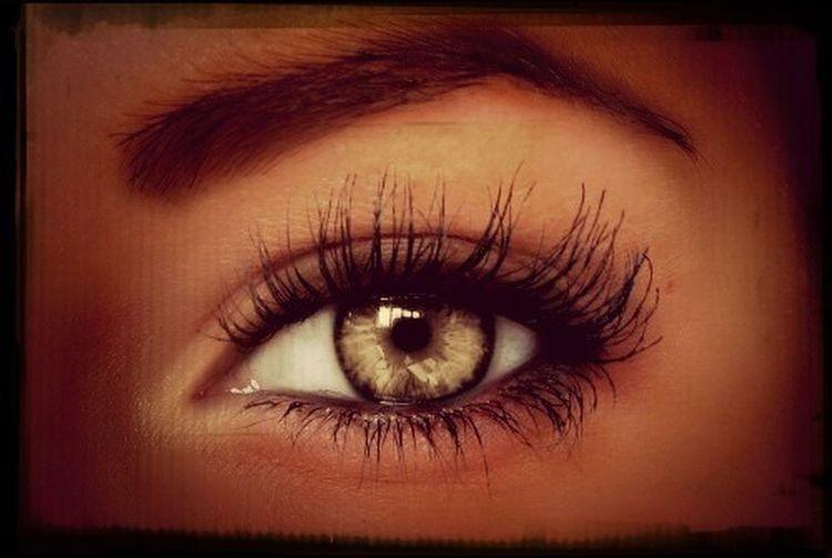 Keeping An Eye On The World