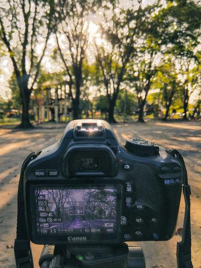 Capture sunset