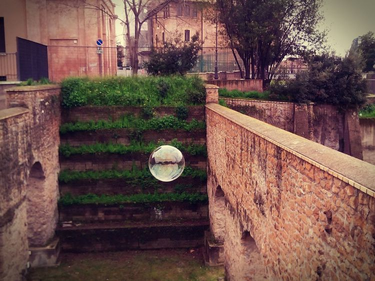 bolle di felicità Casa House Close-up Photography Day Vintage Roma Bolle Ball Nature Mobility In Mega Cities