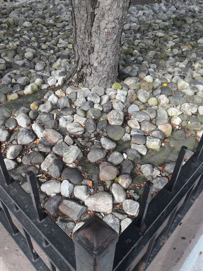 Square Stone Stones Streetphotography Garden High Angle View Pebble Close-up Stone - Object